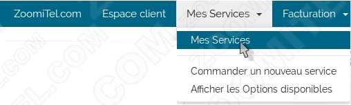 cloud-panel zoomitel mes services