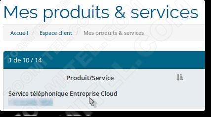 CloudPanel-Service-Entreprise-Service-telephonique-Entreprise-Cloud-selection-tableau.png
