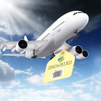 Service téléphonique pour Snowbird de ZoomiTel